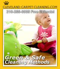 Cleveland green cleaning solutions