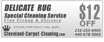 Cleveland,OH oriental Rug Cleaning